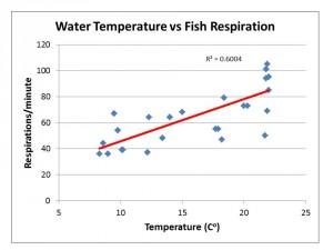 water temp vs fish respiration